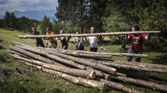 500 voluntarios para cuidar los bosques catalanes